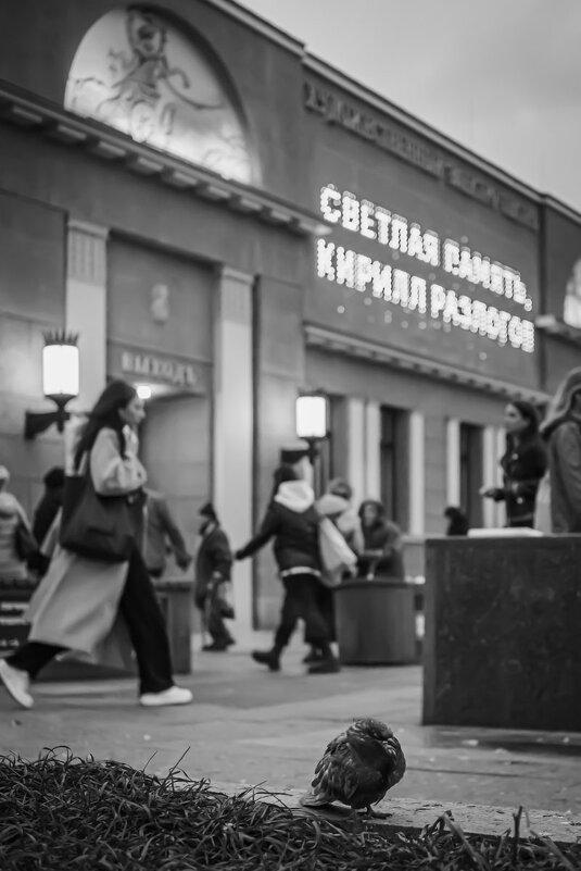 ПАМЯТЬ - Сергей Янович Микк