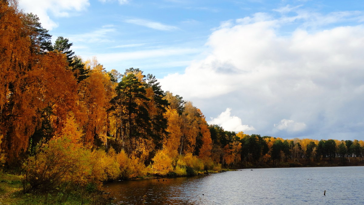 Осень... - &Любовь& &~&