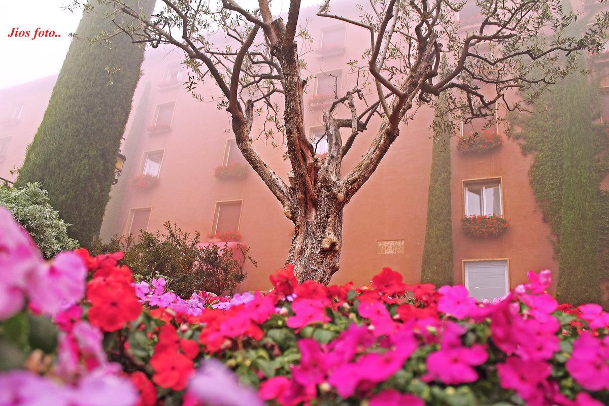 Montserrat... - Jio_Salou aticodelmar