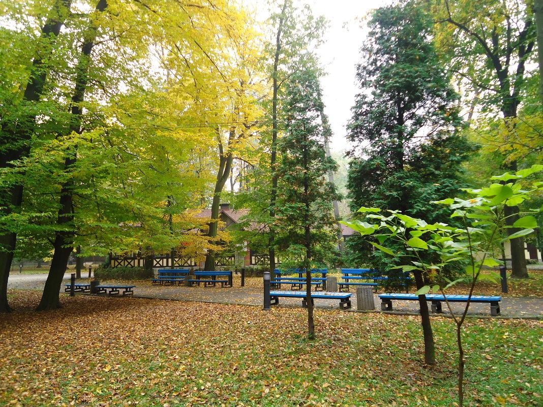 В парке - Christina Batovskaya