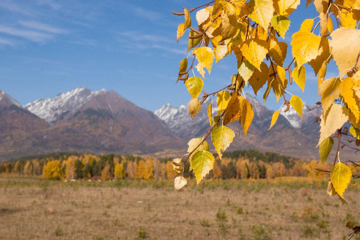 Осень в Тункинской долине - Ольга Трушникова