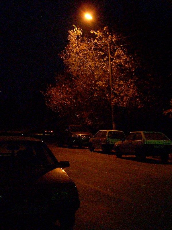 Осенняя ночь. - Sergey Serebrykov