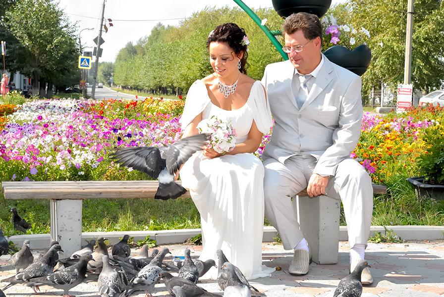 Любовь и голуби 3 - Николай