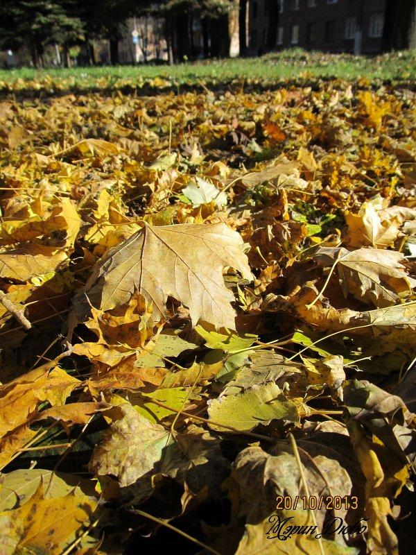 Пожухли листья на дворе... - Мэрин Дюбо