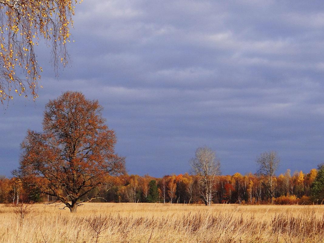 Панорама осени. - Антонина Гугаева