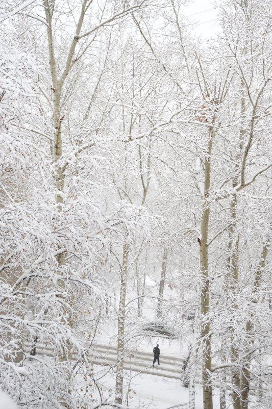 Зима - Виталий Иванов