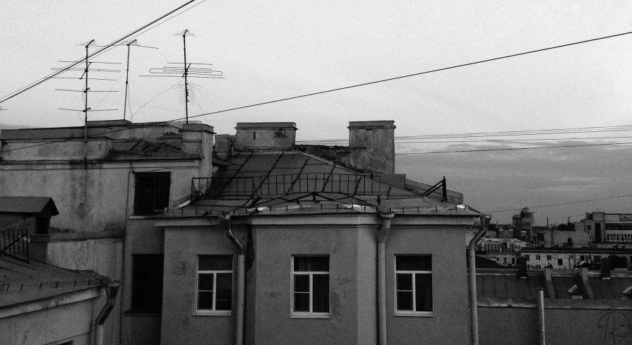 AnTREE - Алхазур Абубакаров