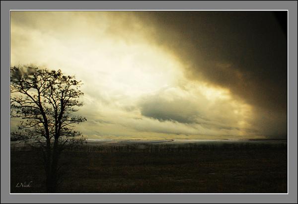Буря мглою небо кроет - L Nick