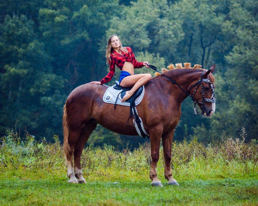 A girl, a horse and rain... - Vladimir Vagner