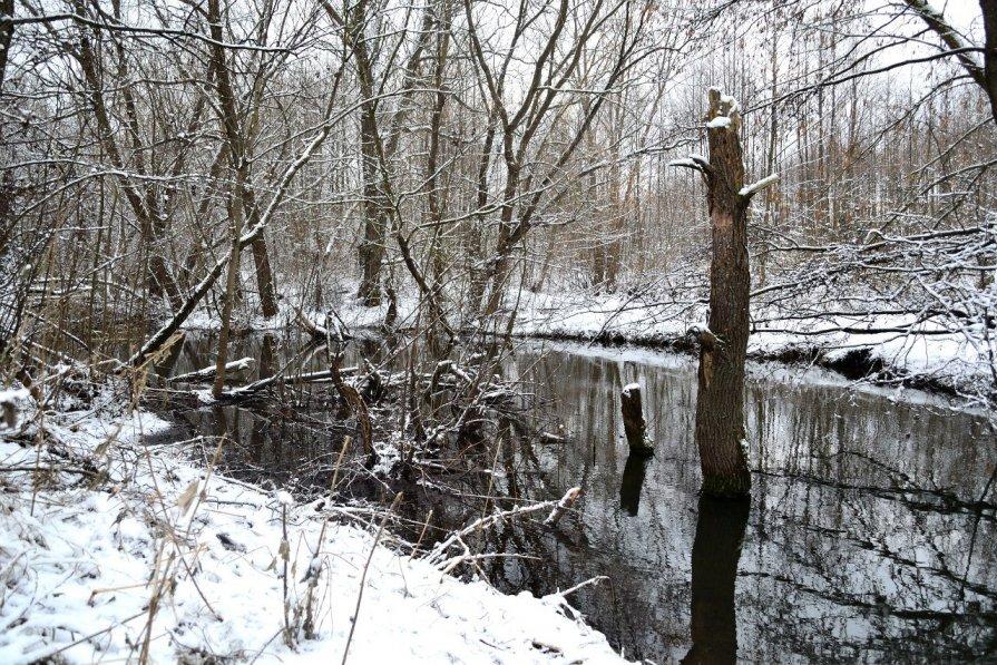 Зимняя река - Ася Гупало