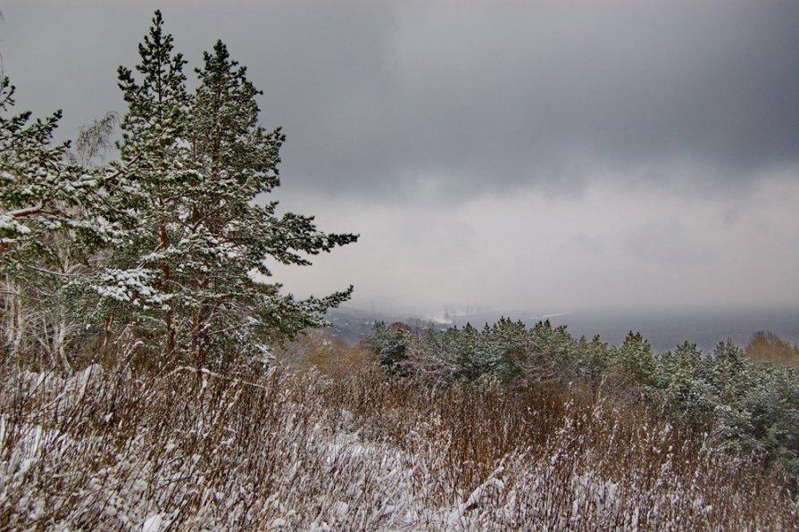 Снег, так снег... - Владимир Новиков
