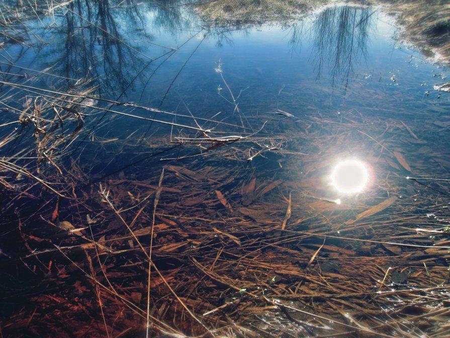 Чистое болото - Never Forever