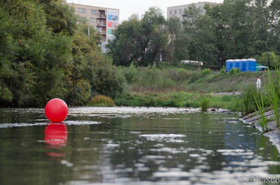 Шарик на водоёме - Роман Яшкин