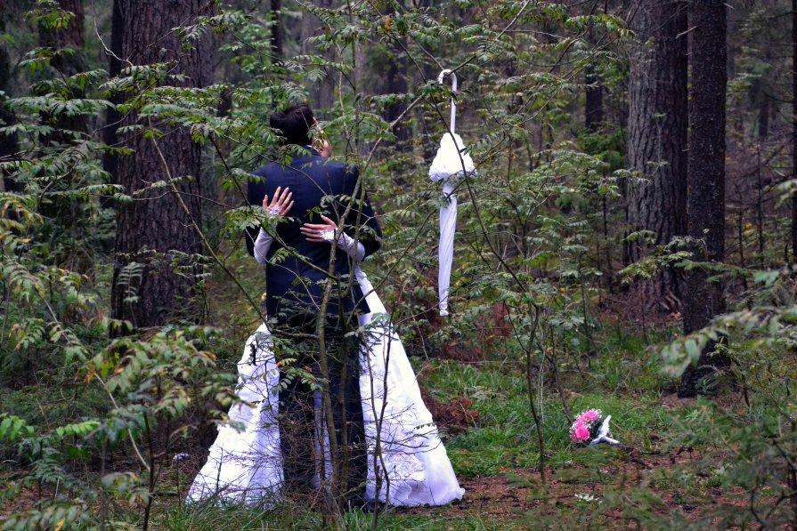 Потерявшиеся в лесу - Михаил Чумаков