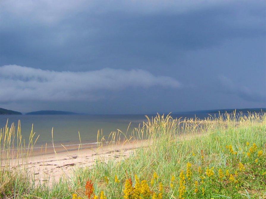 разноцветное Белое море - Максим Судаков