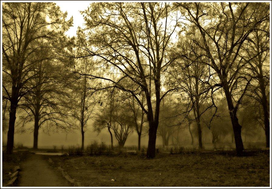 Туман - Анастасия Рябова