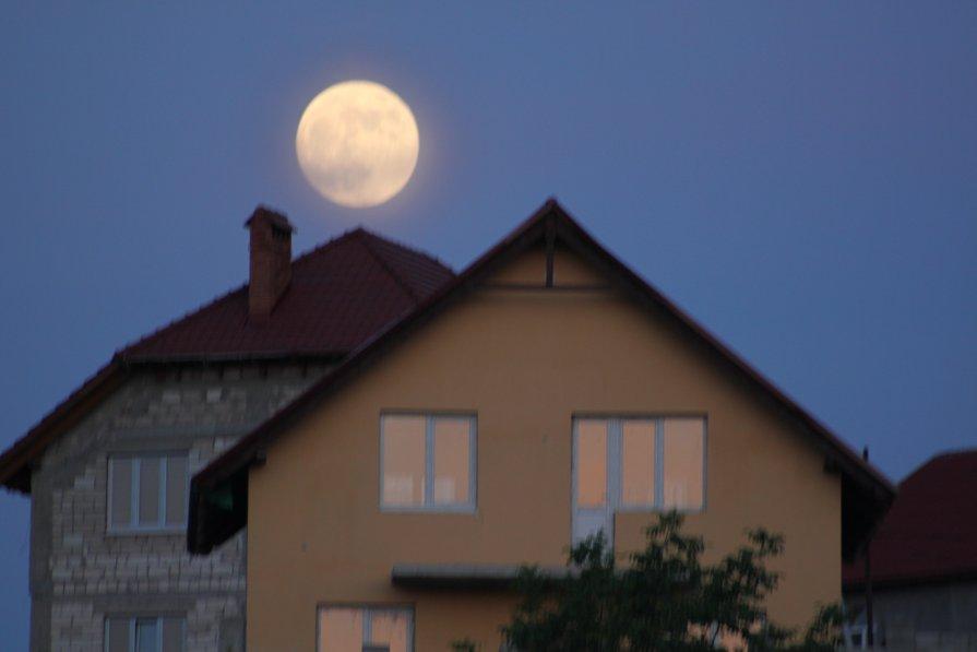Moon - natalia nataria