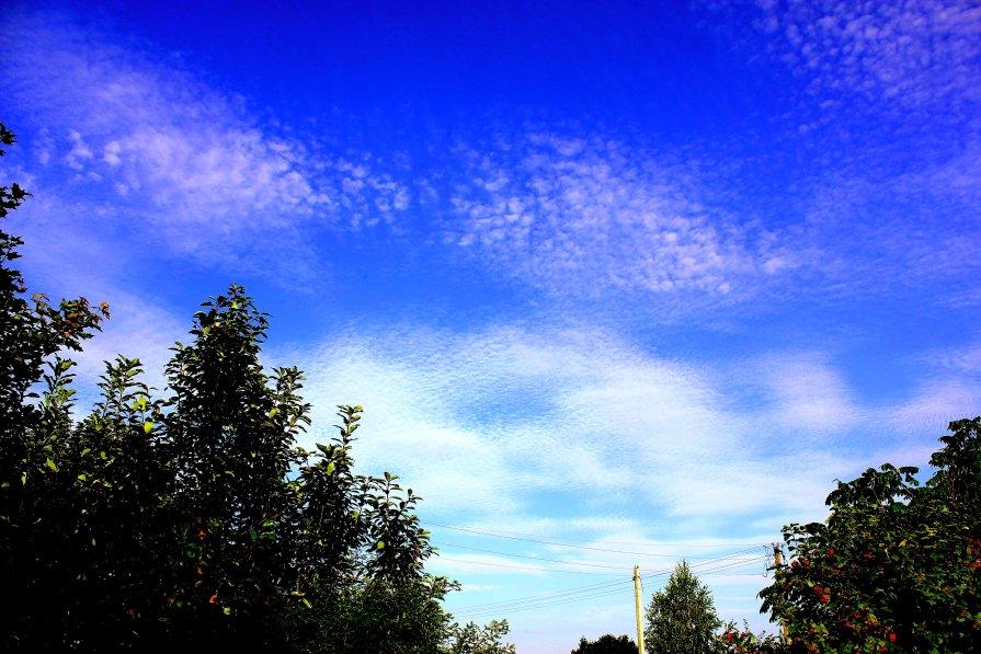 Sky - Мария Полосина