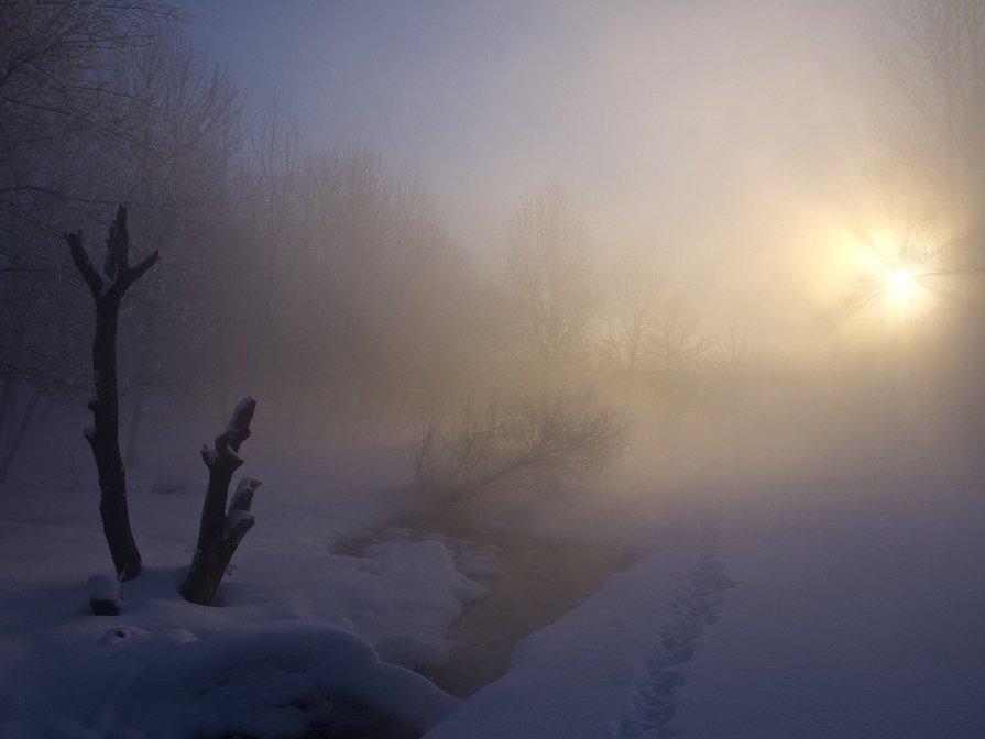 Тропинка к свету - Максим Судаков