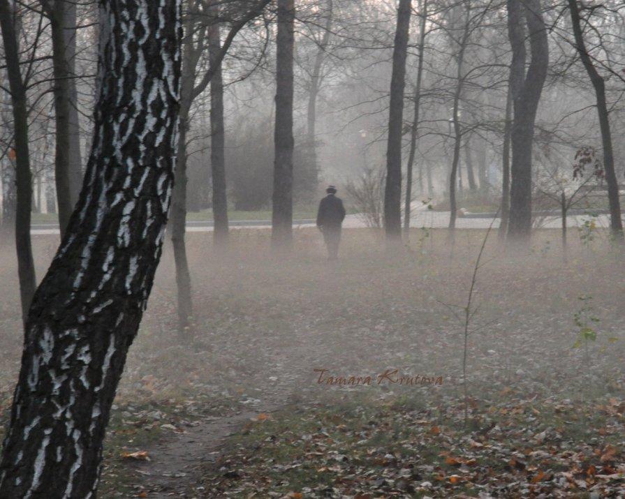 Туман - Тамара Крутова