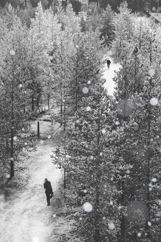 Скоро зима - Евгения Савина