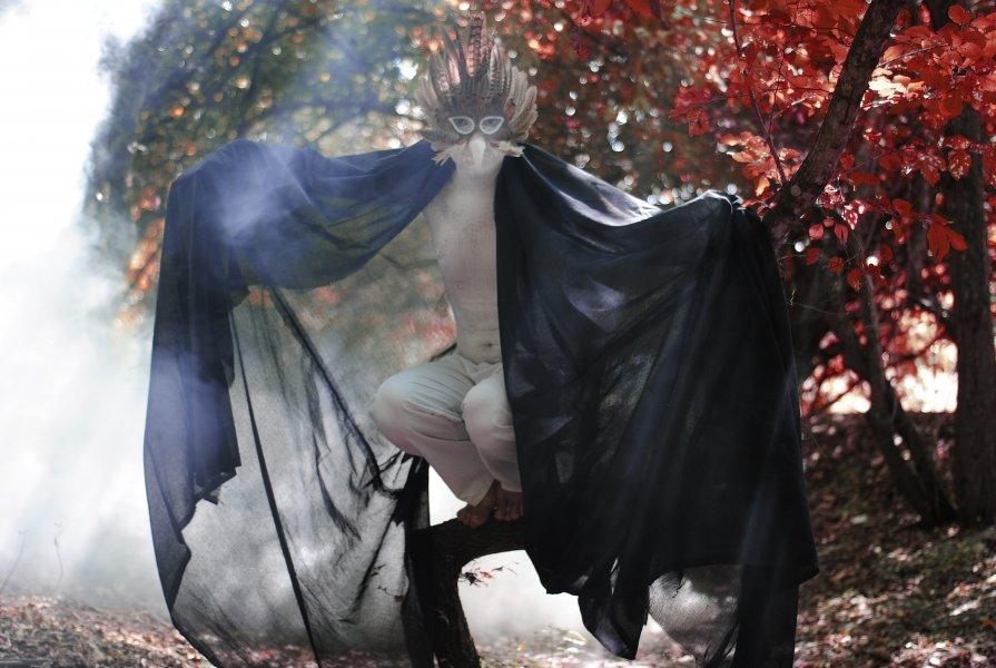 Fairy bird - Татьяна Ачелова