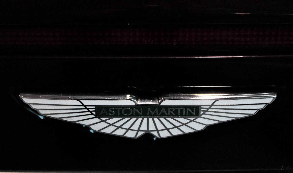 знаменитый автомобильный логотип - Любовь Анищенко