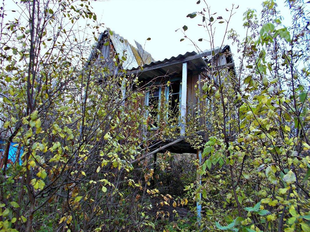 Дом на ножках 2 - Оксана Баллыева