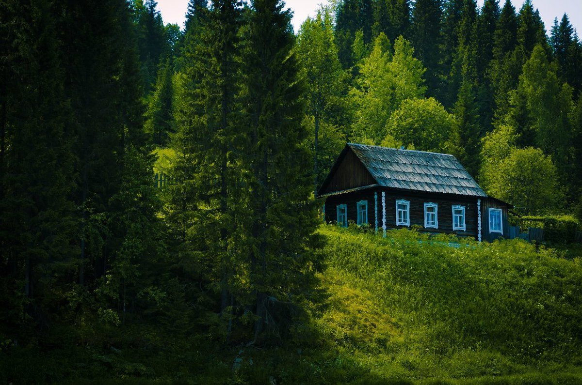 день снять одинокий домик в лесу тоді було