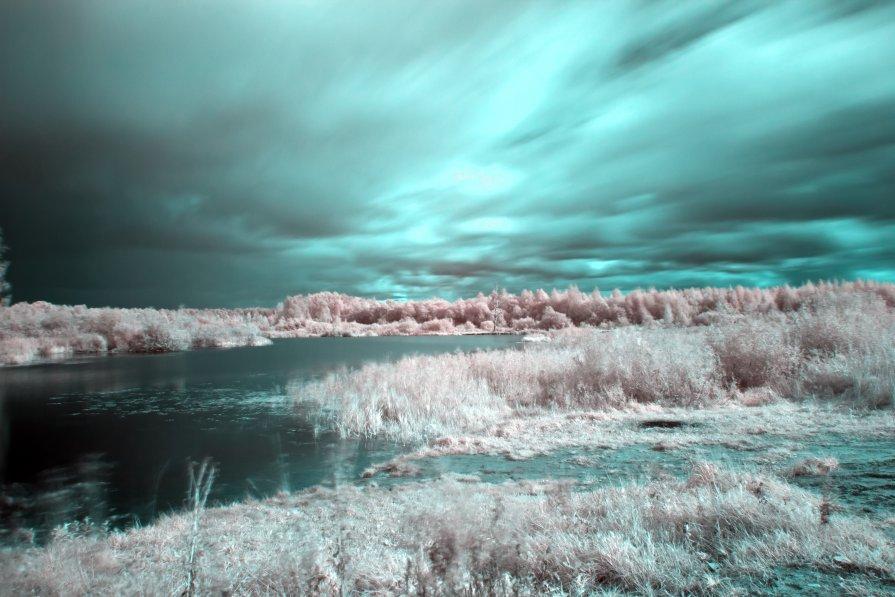 Мир в ИК-свете - Антон Лебедев