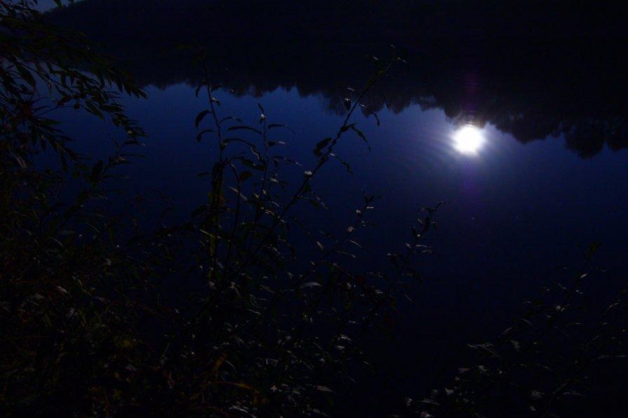 В лунном свете - Владимир Новиков
