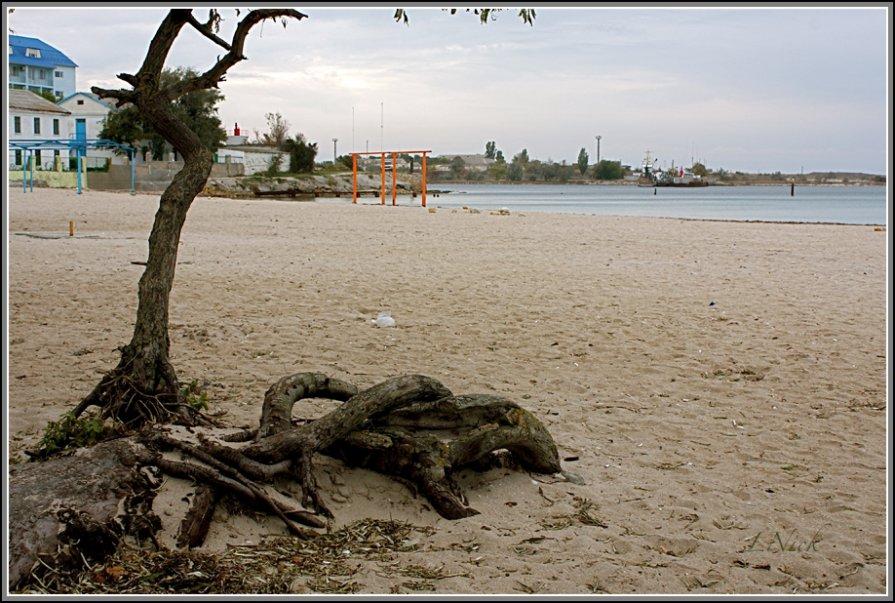 Осенний пляж - L Nick