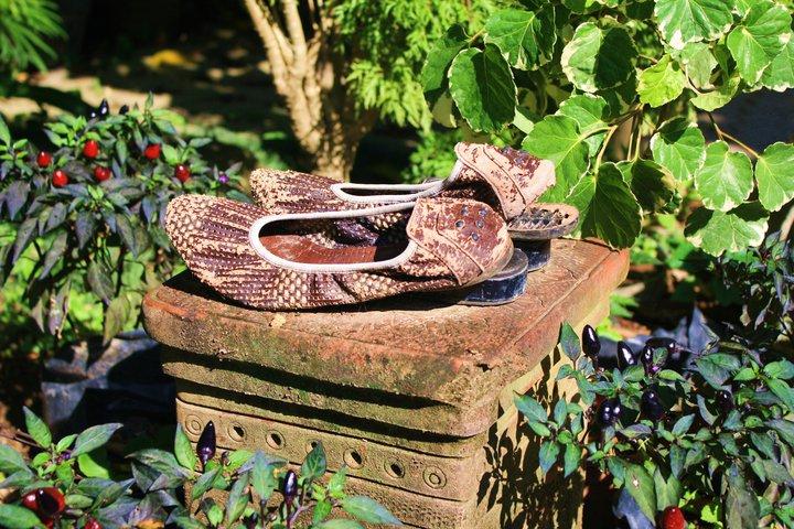 Cinderella shoes. Ubud. Bali. Indonesia. - Eva Langue