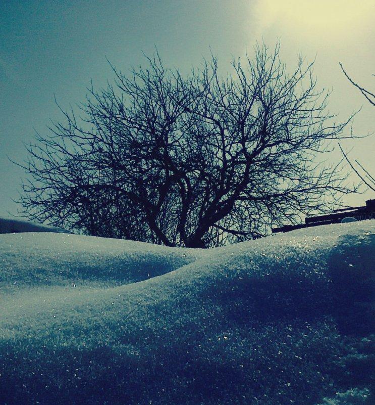 зима - Анастасия Большакова