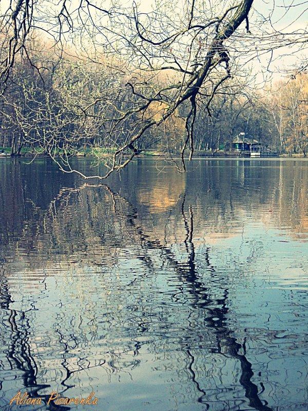акварельные краски парка - Алёна Писаренко