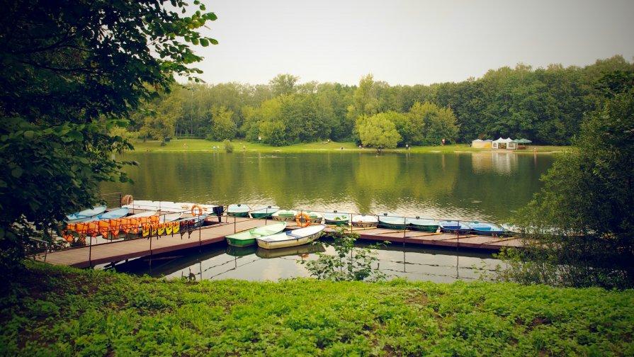 голосеевский парк лодки