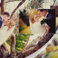Свадебная фотокнига :: Евгения Коновницына