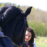 Кормление коня :: Валентина Кондратова