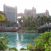 Багамы. :: Lera Safronova