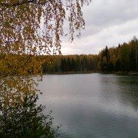 ... :: Марат Шарафутдинов