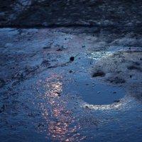 Весенний лунный свет :: Людмила Ильина
