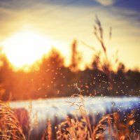 The Sun goes to bed :: Дмитрий Лир