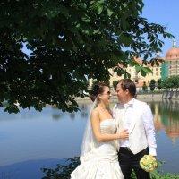 Свадьба в Дрездене :: Олеся Фокина