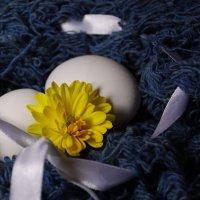 гнездо :: Татьяна Вилкова
