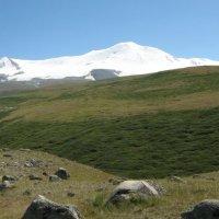 Алтай горы :: Юлия Кучерова