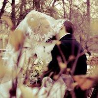 wedding :: Сергей Гончаров