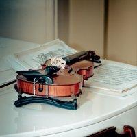 Скрипка :: Алексей Листопад