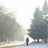 Мороз :: Владислав Лапиков