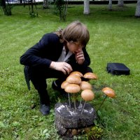 Чудо-грибы;) :: Елена Савинкина