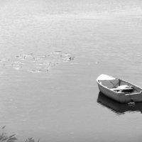 Лодка на реке :: Кирилл Воронин